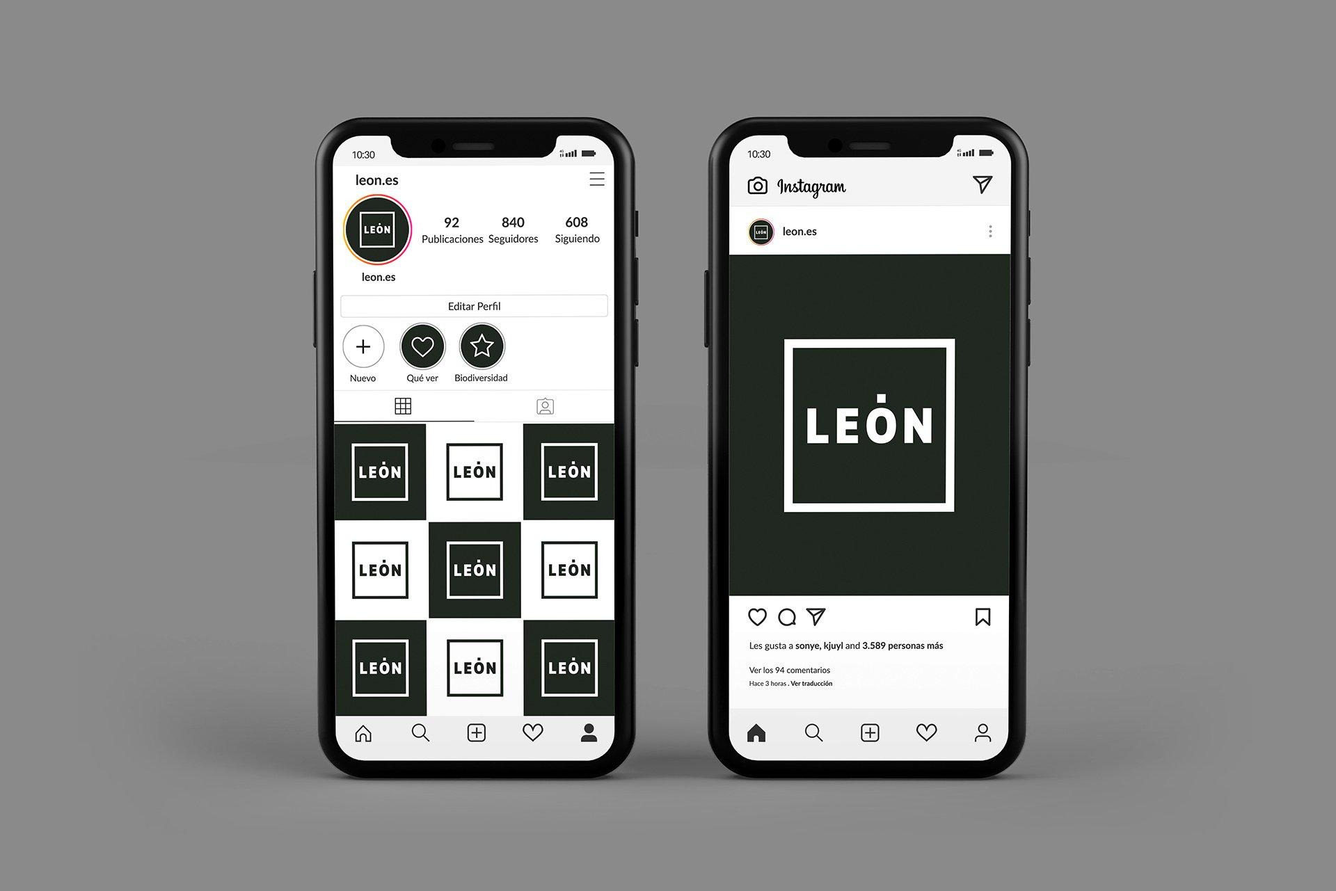 León 10